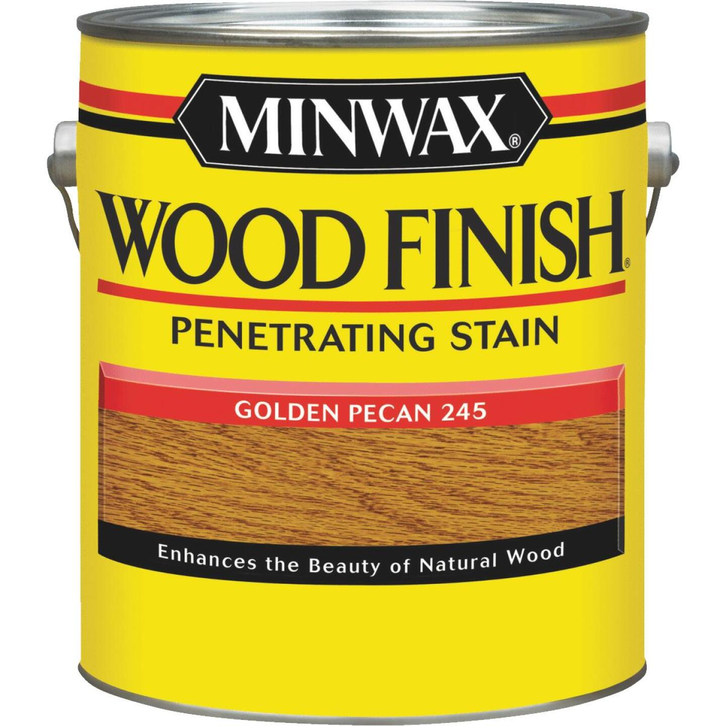 Minwax Wood Finish Penetrating Stain, Golden Pecan, 1 Gal. Image 1