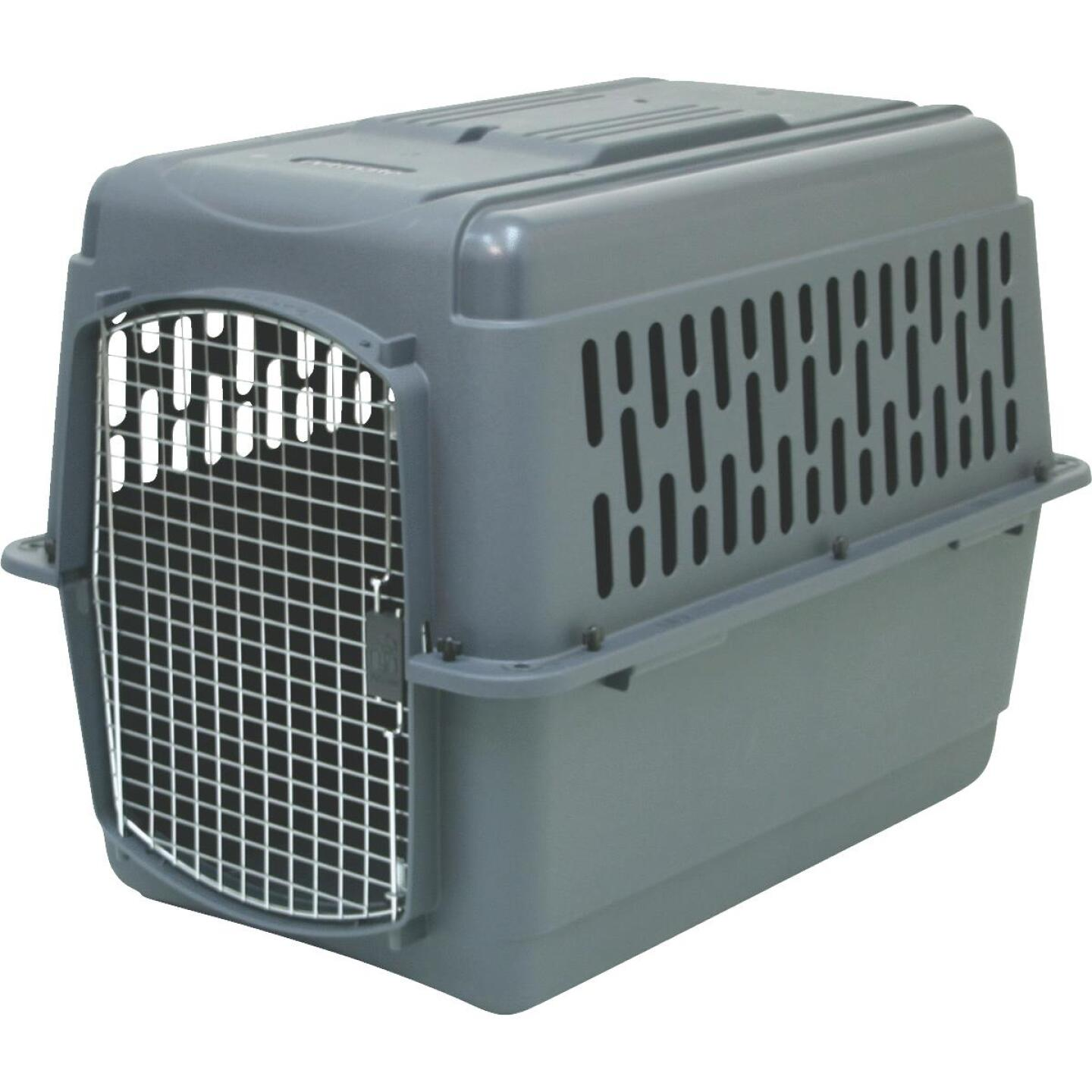 Petmate Aspen Pet 36 In. x 25 In. x 27 In. 50 to 70 Lb. Large Porter Pet Carrier Image 1